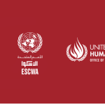 A newly established web platform on Social Protection and Human Rights is launched